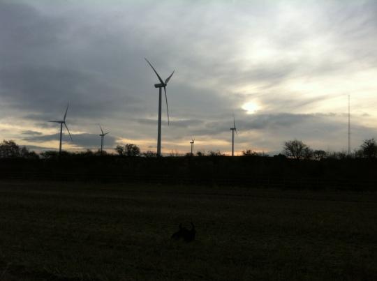 Wind Turbines, Mansfield